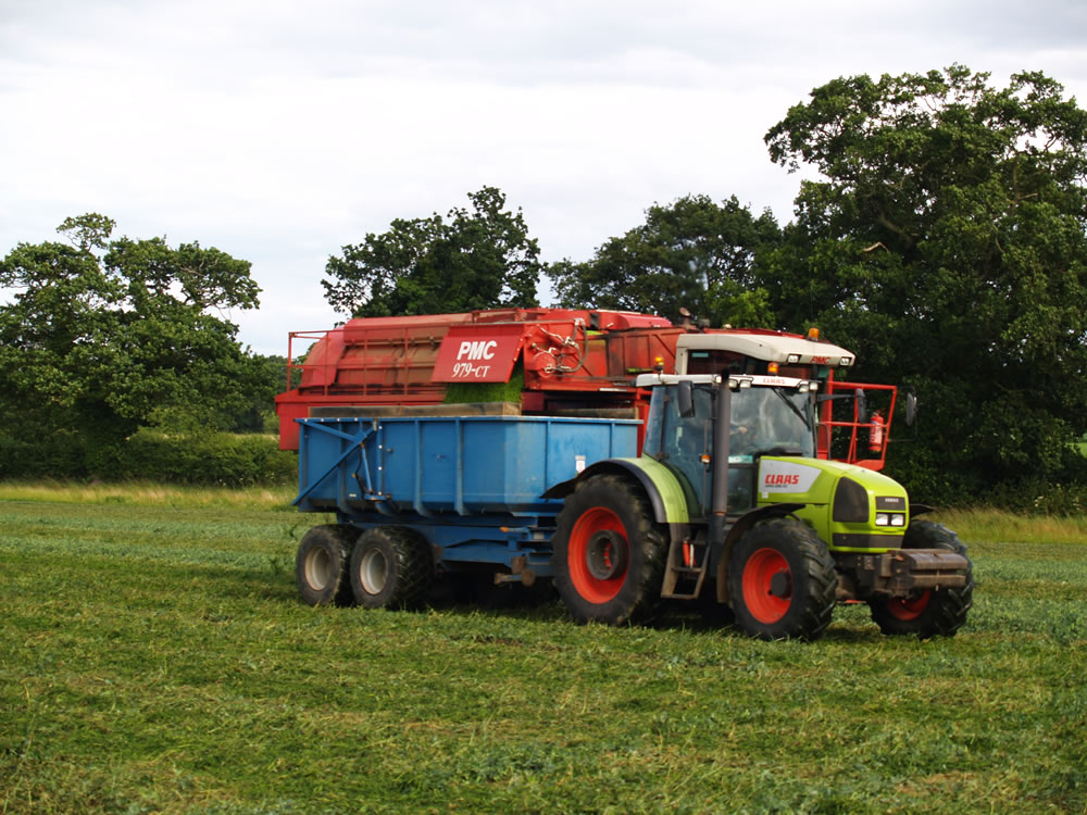 At the peak of harvest, the viners can still be moving as the trailer pulls along side to collect the peas